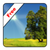 True Weather LWP Free 1.1