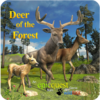 Игра -  Deer of the Forest