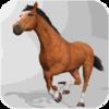 Horse Simulator 3D 1.0.3c